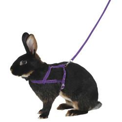 KERBL Uprząż dla królika, 34 - 50 cm, L [81761]