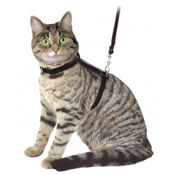KERBL Szelki dla kota ze smyczą [83819]