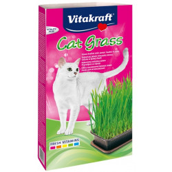 VITAKRAFT CAT GRASS zestaw 120g  d/kota