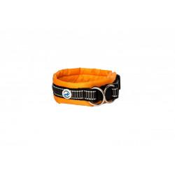 ALL FOR DOGS Klasyczna obroża Pomarańczowa M